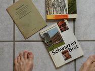 Bücher über den Bergbau und die Bergmänner im Raum Aachen - Alsdorf (Nordrhein-Westfalen)