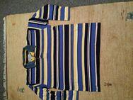 2 Sweatshirt Gr 52/54  im gutem Zustand. Preis für beide. - Kassel Brasselsberg