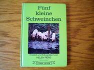 Fünf kleine Schweinchen-Helen Piers-Carlsen Verlag,von 1974,Kinderbuch,lesen lernen - Linnich