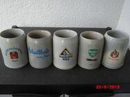 Sammlung Bierkrüge Steingut: Schultheis Bier vom Rhein, Hannen Alt, Andreas Bier, Feldschlösschen, Rhenania - Bottrop