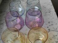 6 Gläser bunt Vintage Retro Rockabilly Mid Century 50er Jahre zus. 20,- - Flensburg