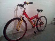 """Oldschool Vintage Mountainbike 26"""" Univega FS-700 18,5"""" Alurahmen - Nürnberg"""