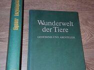 1977 Enzyklopädie der Tiere Band1 + 1976 Wunderwelt der Tiere - Verden (Aller)