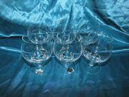 B Beyer 6 Weinbrandgläser, Cognacgläser / Glas, Gläser-Set, Kristallglas, Neu - Zeuthen
