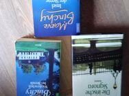 Maeve Binchy - Die irische Signora  HC  Wiedersehen bei Brenda und Insel der Sterne TB - Euskirchen