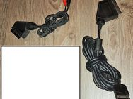 Edision AV-Out Kabel Scart-Stecker - 2 x Cinch-Stecker - Verden (Aller)