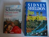 TB: Charlotte Link, M. Binchy, K. Follett, F. Schätzing, S. Sheldon - Witten