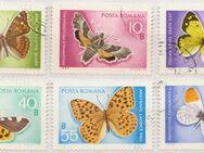 Posta Romana-Rumänien Schmetterlinge (1)  [378] - Hamburg