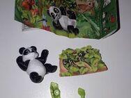 Überraschungsei / Ü-Ei * Serie NATOONS * Panda * - Bonn