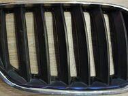 BMW X5 E53 03-06 Kühlergrill Niere Rechts Chrom Schwarz - Verden (Aller)