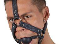 Kopfgeschirr mit Mundknebel - Espenau