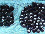 Konvolut von 78 schwarzen und lila identischen Knöpfen - Niederfischbach