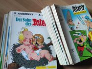 Asterix und Obelix - Plettenberg