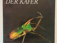 Wunderwelt der Käfer - Kühlungsborn