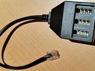 Telefon Adapter RJ45-Stecker (8/4) auf 3 x TAE Buchse 20 cm - Verden (Aller)