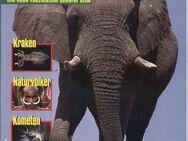 Abenteuer Natur - Elefanten - Die neue Faszination unserer Erde - 1 / 1994 - Nürnberg