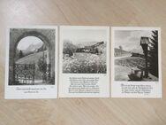 3 Ansichtskarten Fotokunst Groh München um 1950 - Bremen