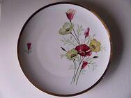 Johann Seltmann Vohenstrauß Porzellan Kuchenteller Teller Blumen Goldrand 28 cm Retro Vintage 5,- - Flensburg