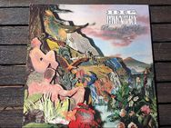 Big Country ‎– Peace In Our Time+ The Seer+ Steeltown Vinyl, LP - Leverkusen