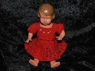 Alte Zelluloid Schildkröt Puppe INGE 25 1/2 / 26 1/2 Celluloid Schildkröt doll - Zeuthen