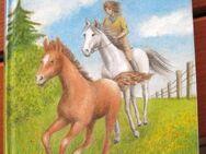 """Schöne Pferdegeschichte """"Susanne freut sich auf ihr Fohlen"""" von Erika Hein in sehr gutem Zustand, Fischer Verlag, empfohlen für Mädchen ab 10 Jahren, 174 Seiten, stammt aus 1991, ISBN: 3439888223, zum Schutz für weiteren Gebrauch schon eingebunden, 4,- € - Unterleinleiter"""