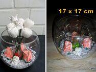 Windlicht Aquarien Glaskugeln mit Teelicht oder Vase mit OVP*NEU* - Neunkirchen (Nordrhein-Westfalen)