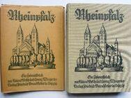 Rheinpfalz. Ein Heimatbuch. Brandstetters Heimatbücher, Band 27 - Königsbach-Stein