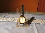 Herrenarmbanduhr Marke Adora / Quarzarmbanduhr / Uhr mit Lederarmband - Zeuthen