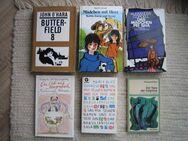 für Bücher-Liebhaber: Bücherangebot 1 - Höchstadt (Aisch) Zentrum
