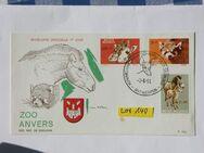 Erstagsbrief Belgien Zoo 1961,Lot 140