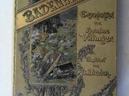 Villinger, Hermine. Aus dem Badener Land. Geschichten. Illustriert von Curt Liebich, von 1898 - Königsbach-Stein
