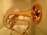 Kühnl & Hoyer Malte Burba Universal - Flügelhorn mit Sonderlack