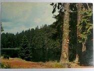 alte AK Braunlage im Oberharz mit Silbersee - Niederfischbach
