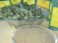 leckere getrocknete Krause Minze für köstlichen Teegenuss - Bad Belzig Zentrum