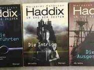 Margaret Peterson Haddix, Im Sog der Zeiten - Trilogie - Hürth