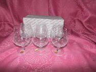 NACHTMANN 6 Weinbrand Gläser - Schwenker Opus, 24% Bleikristall / selten - Zeuthen