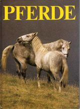 Pferde von Sayer, Angela