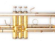 B & S Challenger II Profiklasse - Trompete 3137/2 ST mit massiv Sterlingsilberbecher