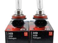 2x H9 Halogenlampen 12V 65W Clear - Berlin Treptow-Köpenick