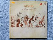 Genesis: A Trick Of The Tail LP - Ilsede