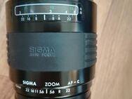 Sigma 4-5,6/70-210mm - Hamm