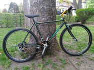 "Seltene Gelegenheit! Original Kuwahara Mountainbike ATB MTB 26"" Japan"