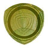 Pappteller 15 Stück, Ø21cm aus Laubblattern von Leaf