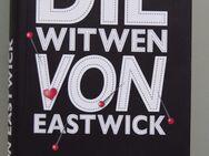 John Updike: Die Witwen von Eastwick - Münster