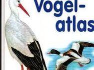 2 Vögel Bücher - Kettig