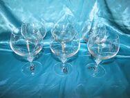 MARC AUREL 6 Stk. Cognac - Schwenker Gläser Vongola, NACHTMANN / Glas, Neu - Zeuthen