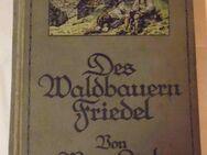 Margarete Lenk  Des Waldbauern Friedel