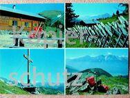 alte, seltene Ansichtskarte - Jugendheim Winklerner Alm - Niederfischbach