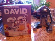 """Design-Saftpresse """"David"""" von SAMEX - Sarstedt"""