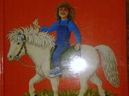 """""""Ponygeschichten"""" von Sigrid Heuck in sehr gutem Zustand, Loewes Verlag, 61 Seiten, 7. Auflage aus 1990, ISBN: 3785518986, zum Schutz für weiteren Gebrauch schon eingebunden, 3,- € - Unterleinleiter"""